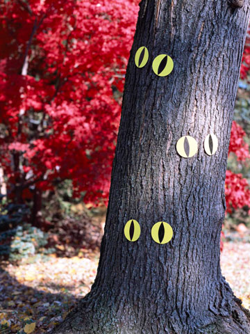 Glowing Halloween eyes on tree