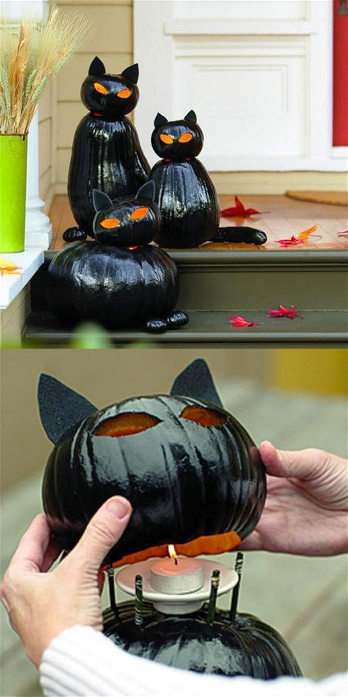 purrrrrfect pumpkins - Halloween Cat Decorations