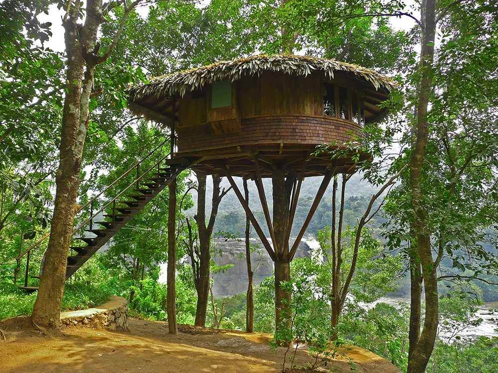 Джунгли Tiny Treehouse