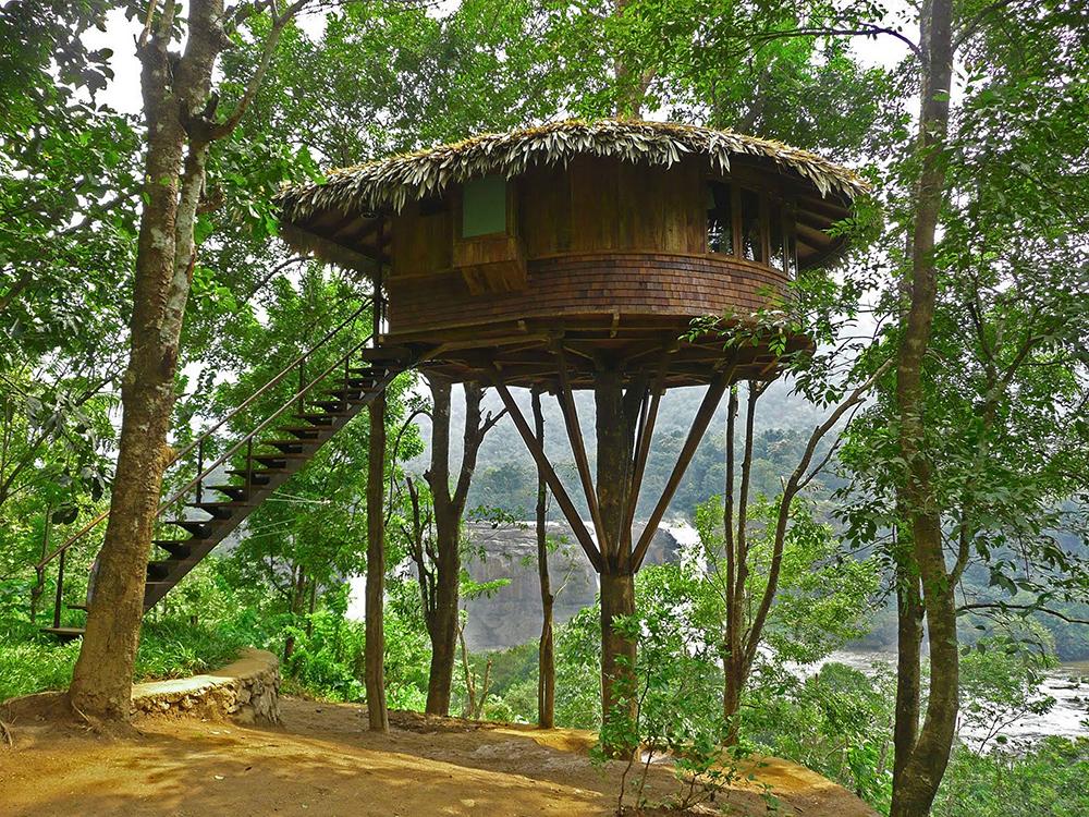 Jungle Tiny Treehouse