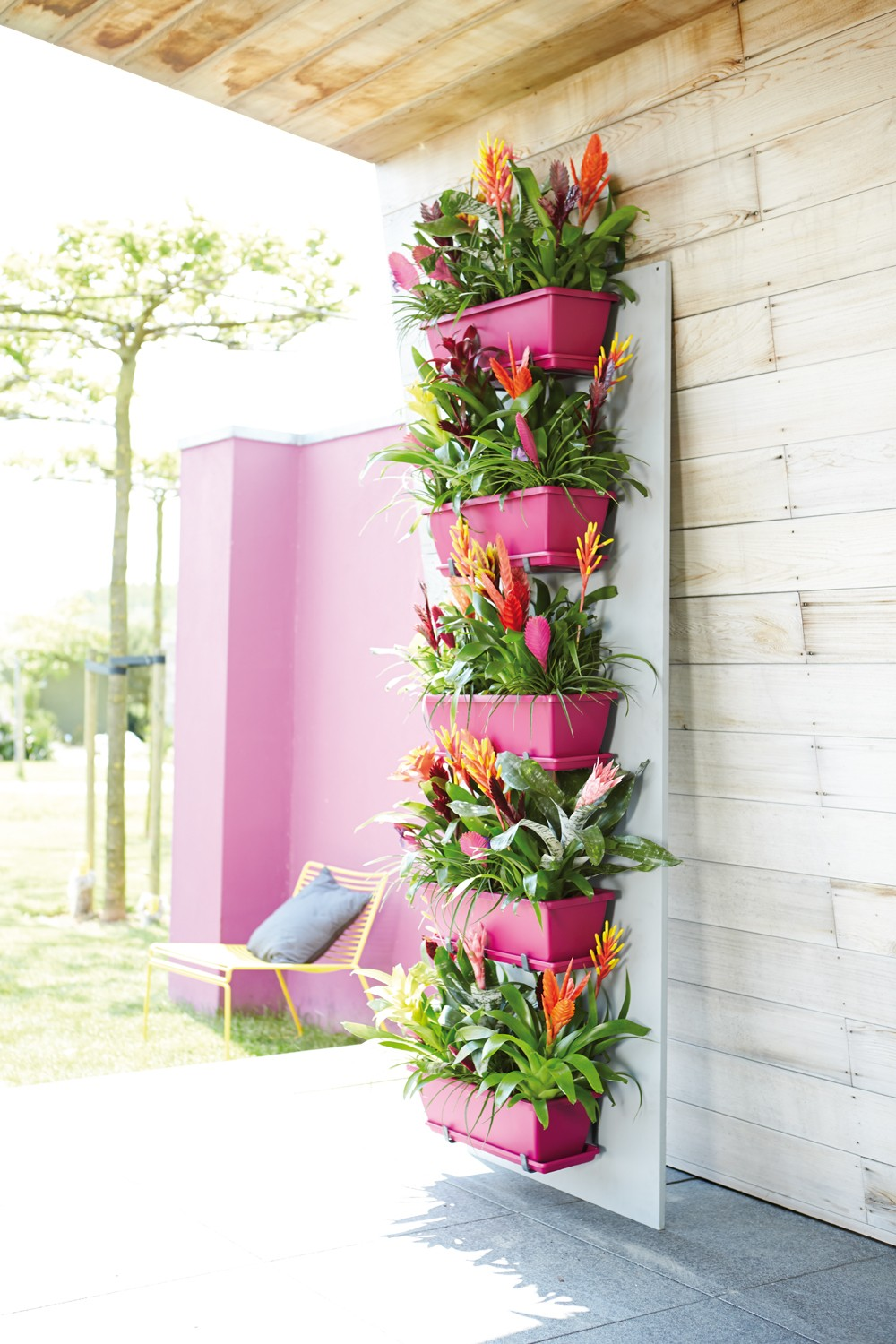 3 bright pink adds a pop of color and accents vibrant bromeliads