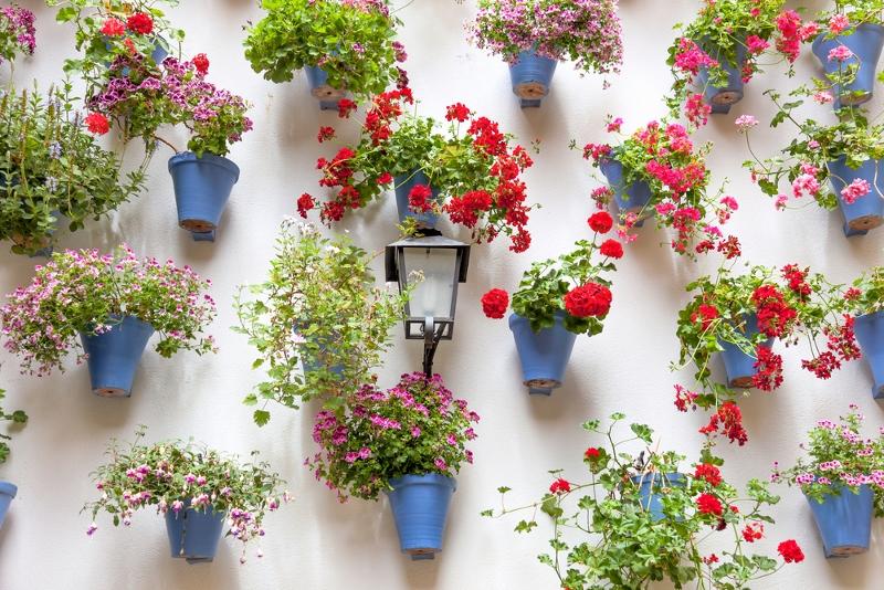 The 50 best vertical garden ideas and designs for 2017 for Flower wall garden