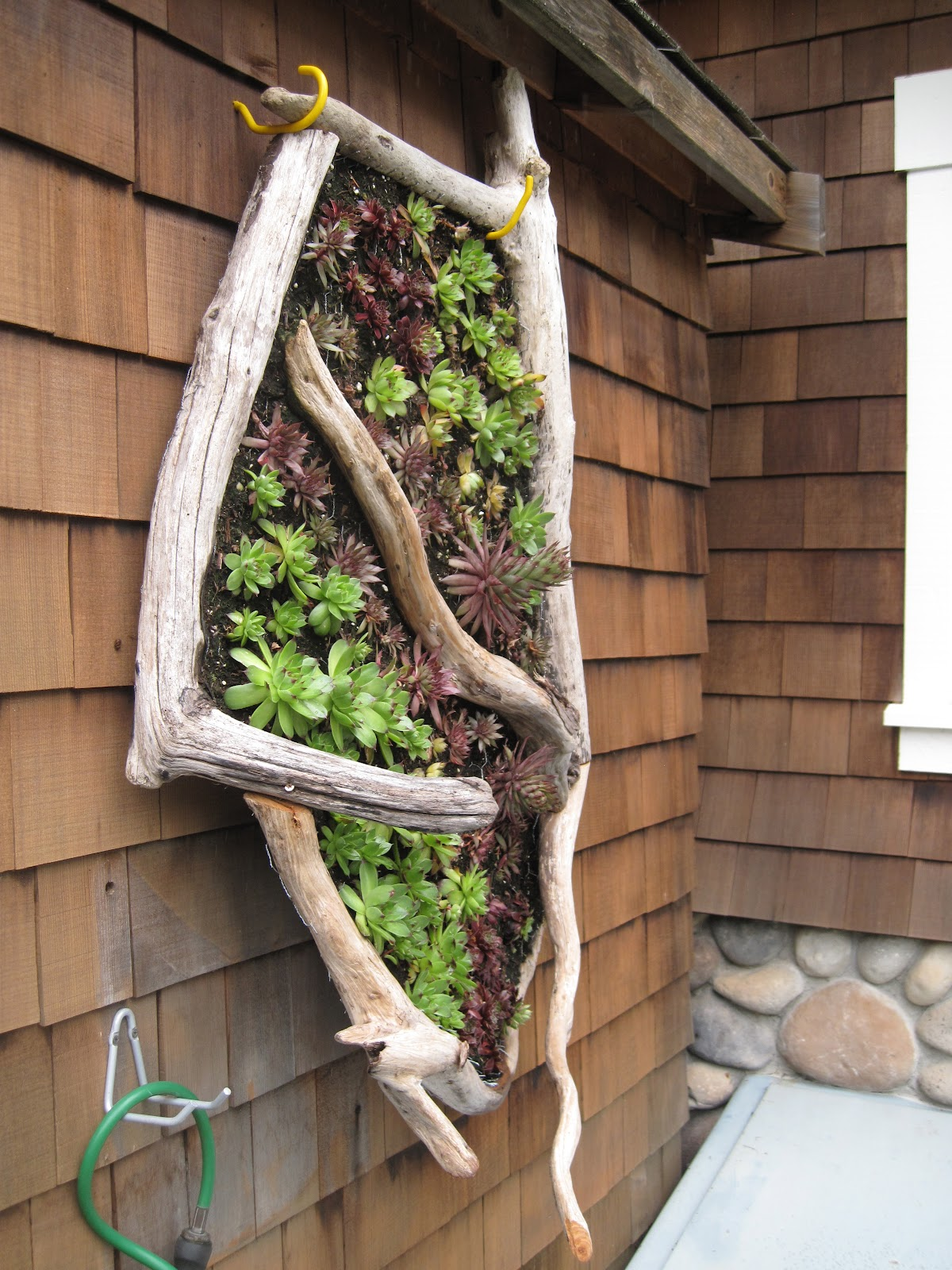 Vertical Gardening Ideas frame a patio space with a beautiful hanging garden A Vertical Garden Idea For A Seaside Cottage