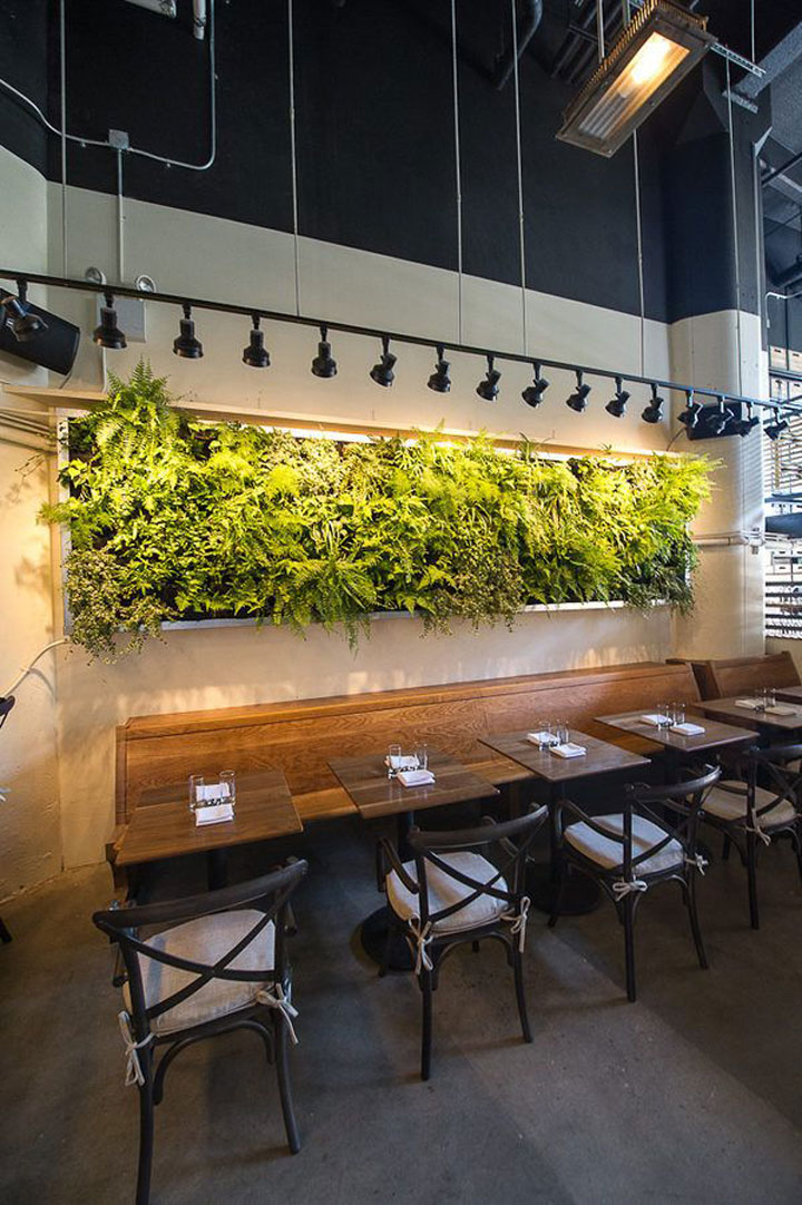 A Minimalist Wall Garden Can Still be Striking
