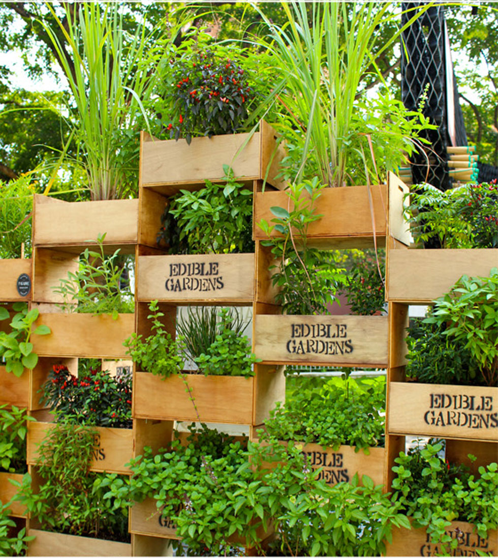 The Best Vertical Garden Ideas And Designs For