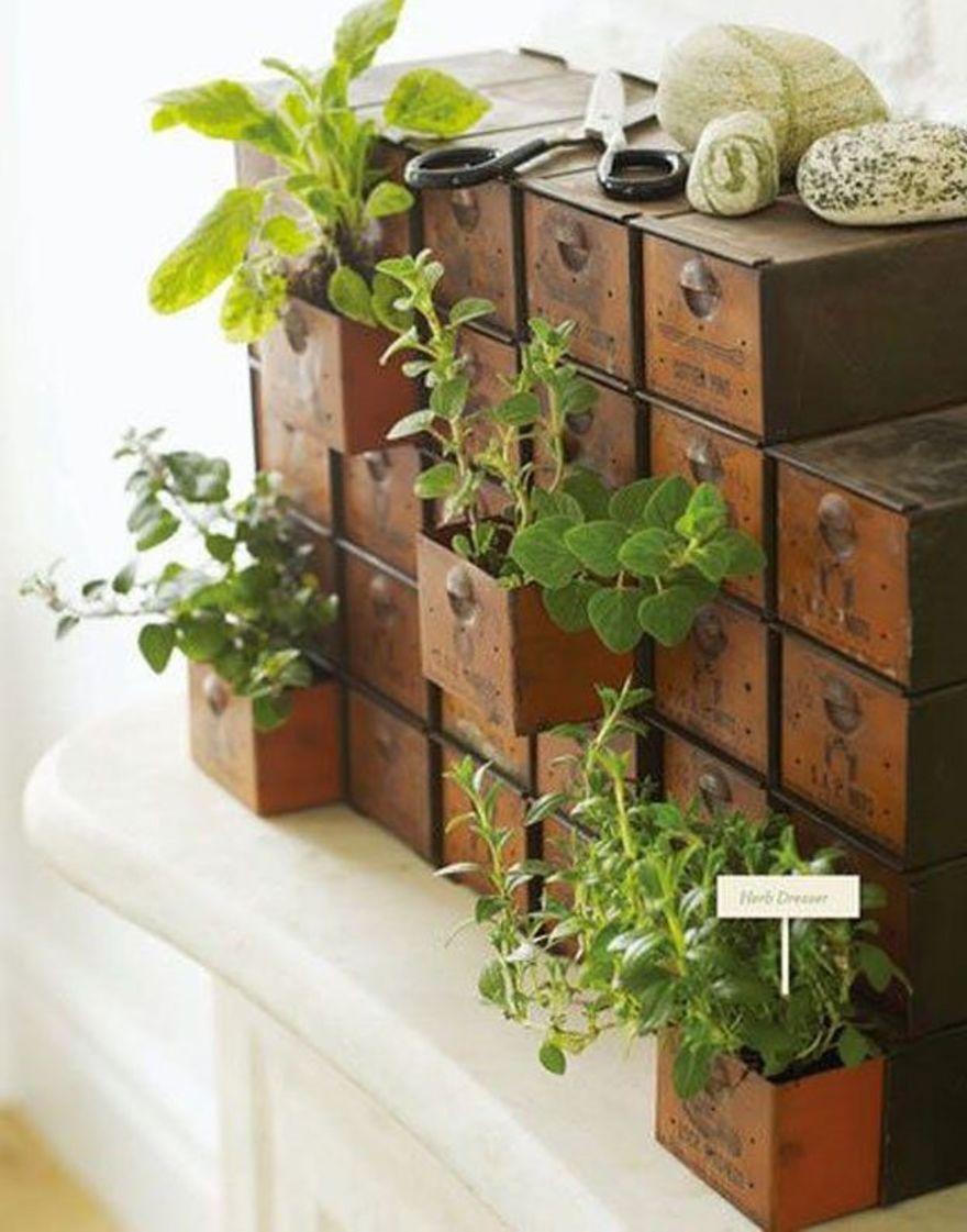 Vertical Garden Ideas olympus digital camera diy vertical gardens09 Incorporating Found Objects Into Vertical Garden Decor