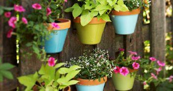 Vertical Garden Designs