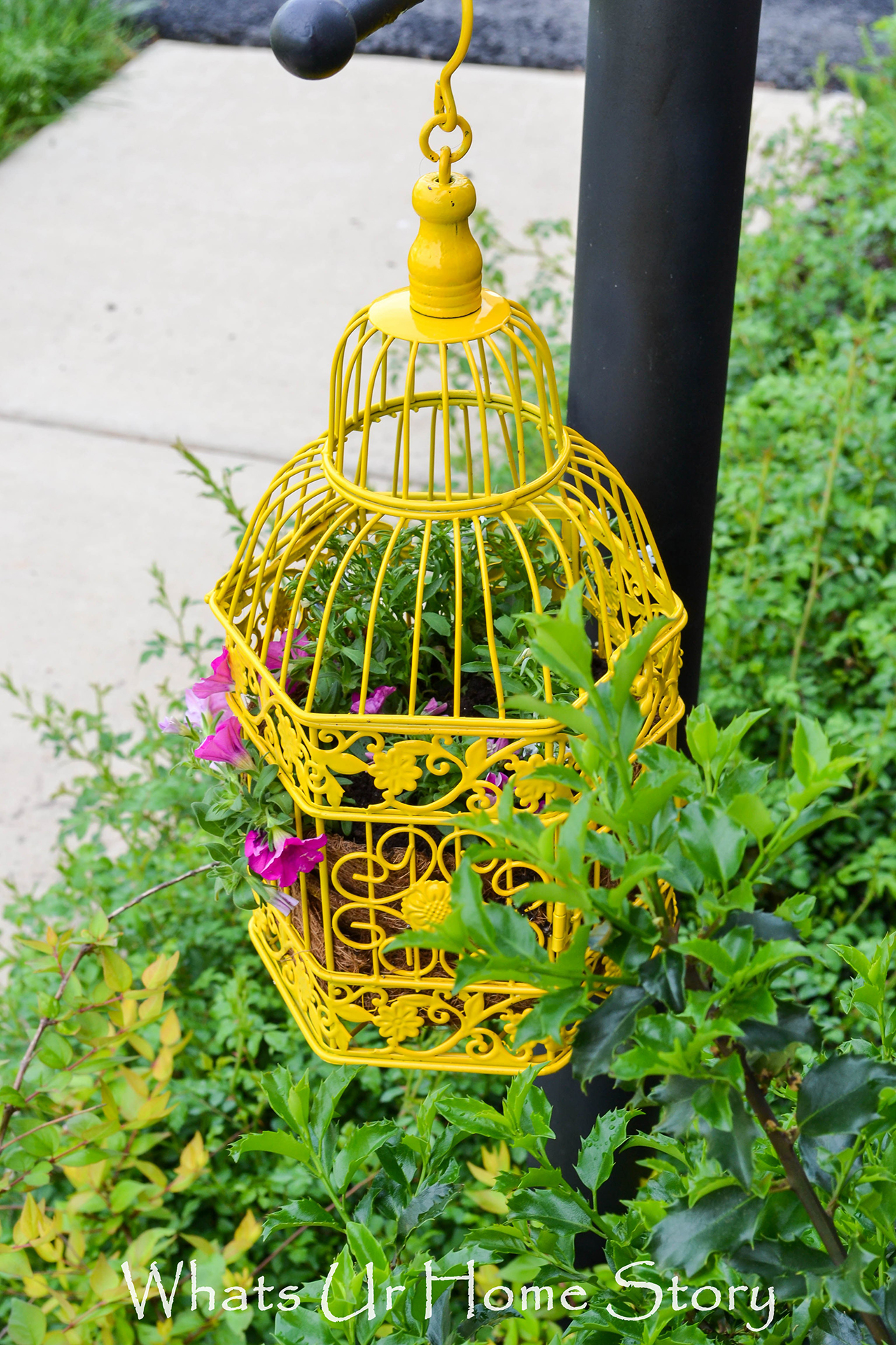 20 Best Decoration Ideas with Birdcage planters in 2018