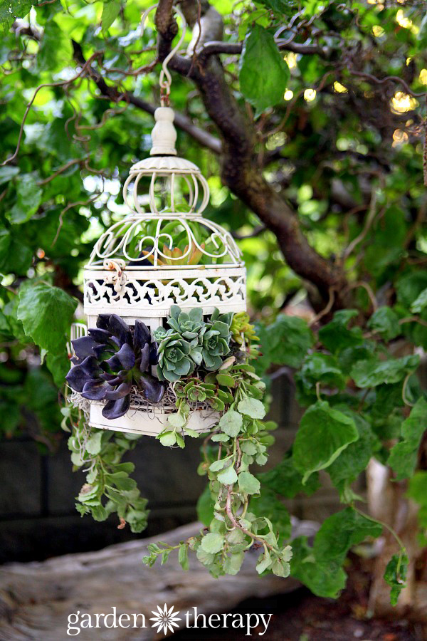 18 Beautiful Garden Decor Ideas with Birdcage Planters