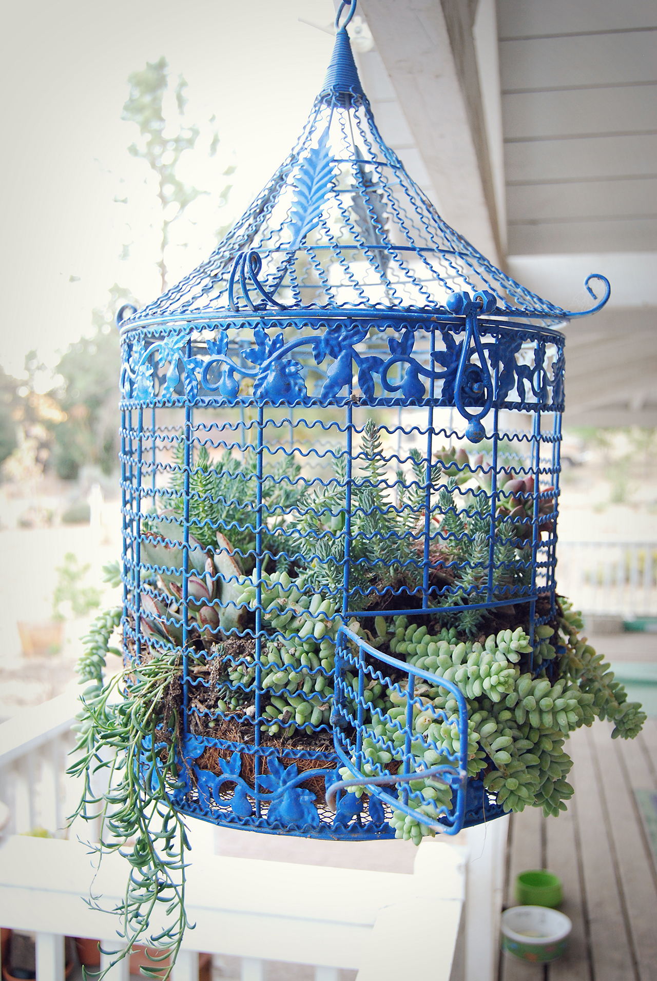 20 Best Decoration Ideas With Birdcage Planters In 2019