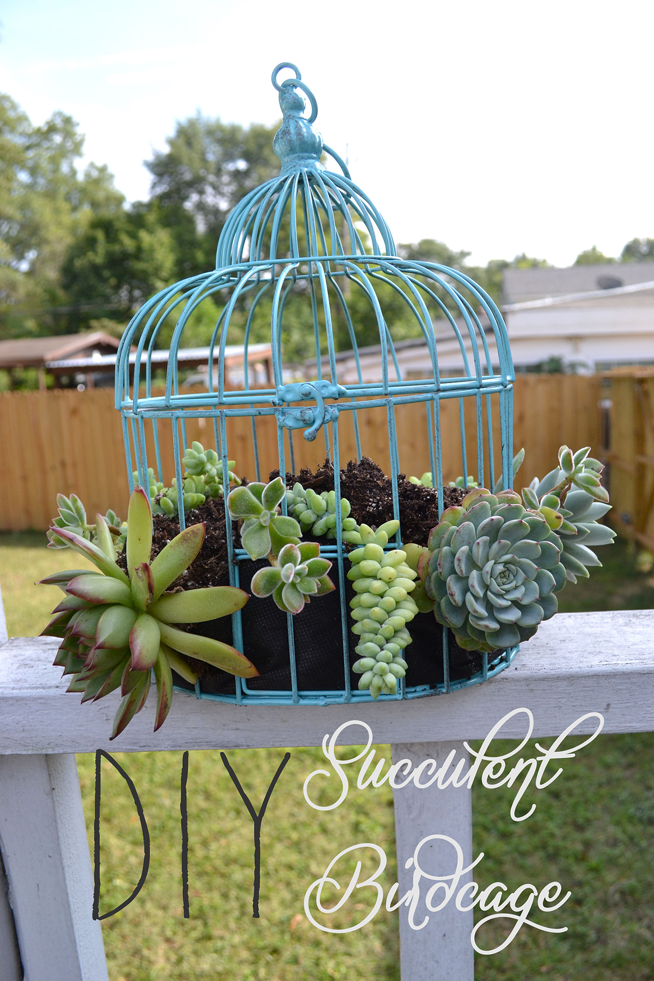 20 Best Decoration Ideas With Birdcage Planters In 2020