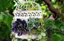 Birdcage Planter Ideas