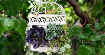 Birdcage Planter Ideas