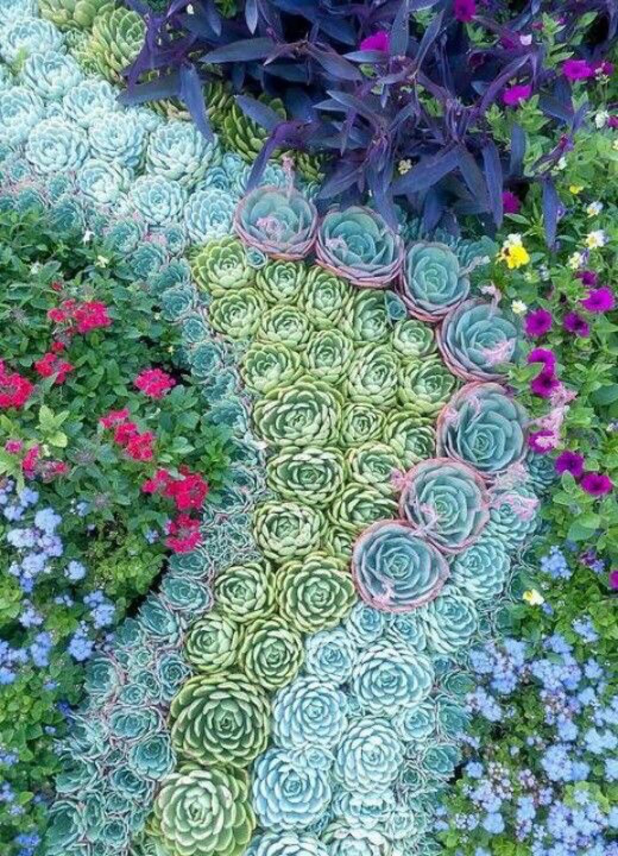 regal pathways with succulent garden designs