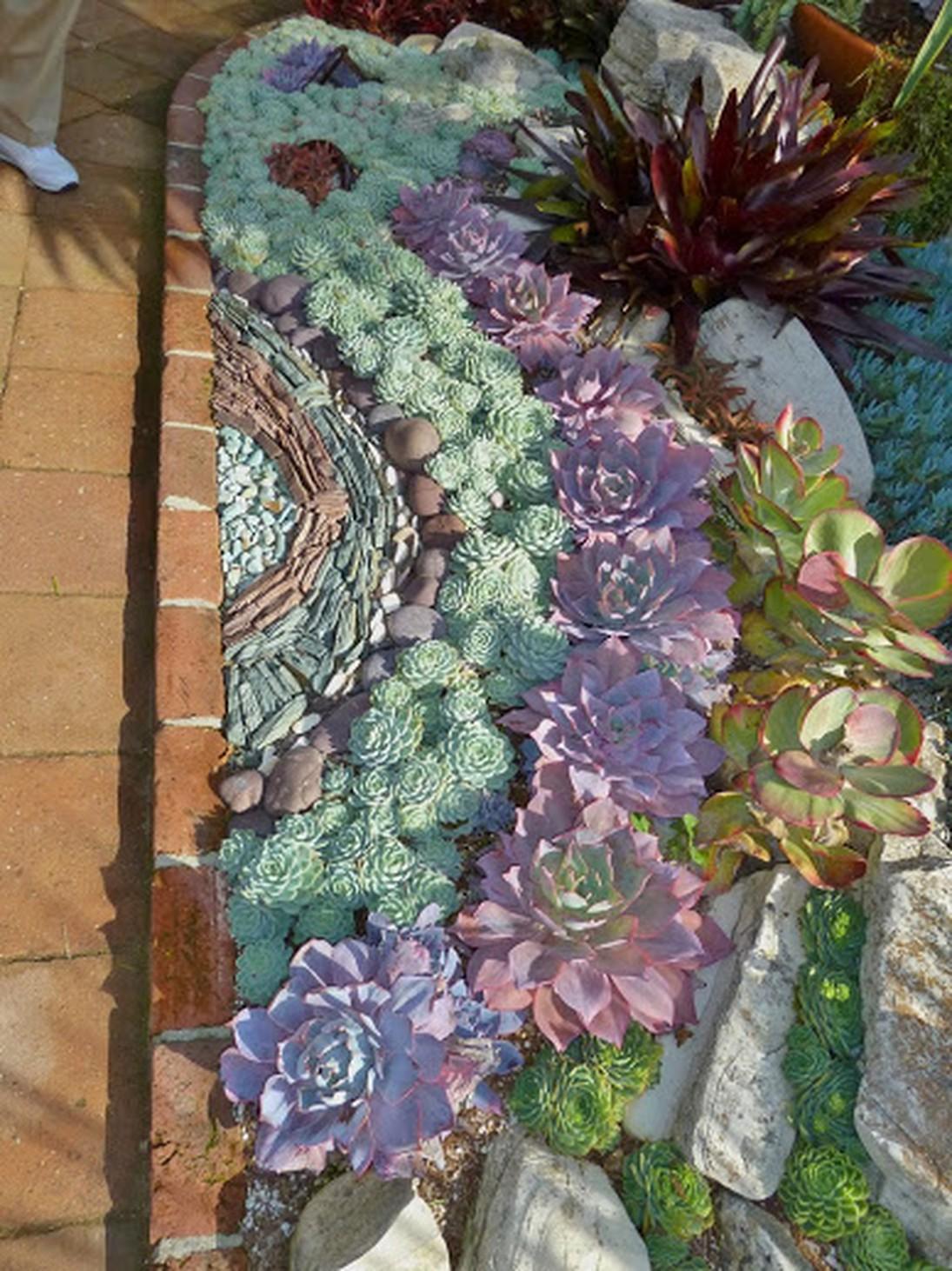 Succulent Garden Ideas a desert friendly oasis 19 By A River Stream