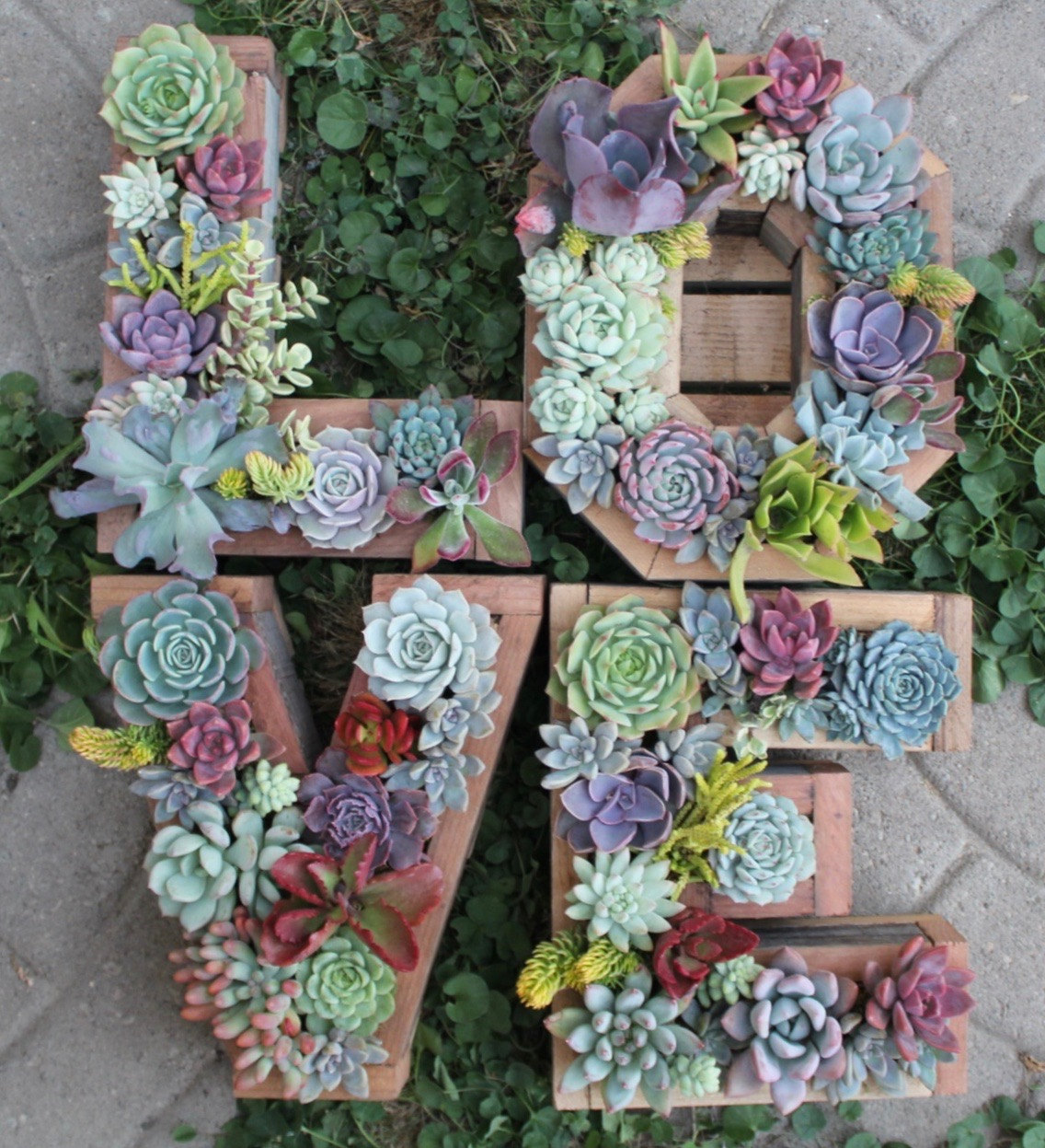 Lovely 20 Cottage Style Landscaping Ideas To Enhance Your: 50 Best Succulent Garden Ideas For 2020