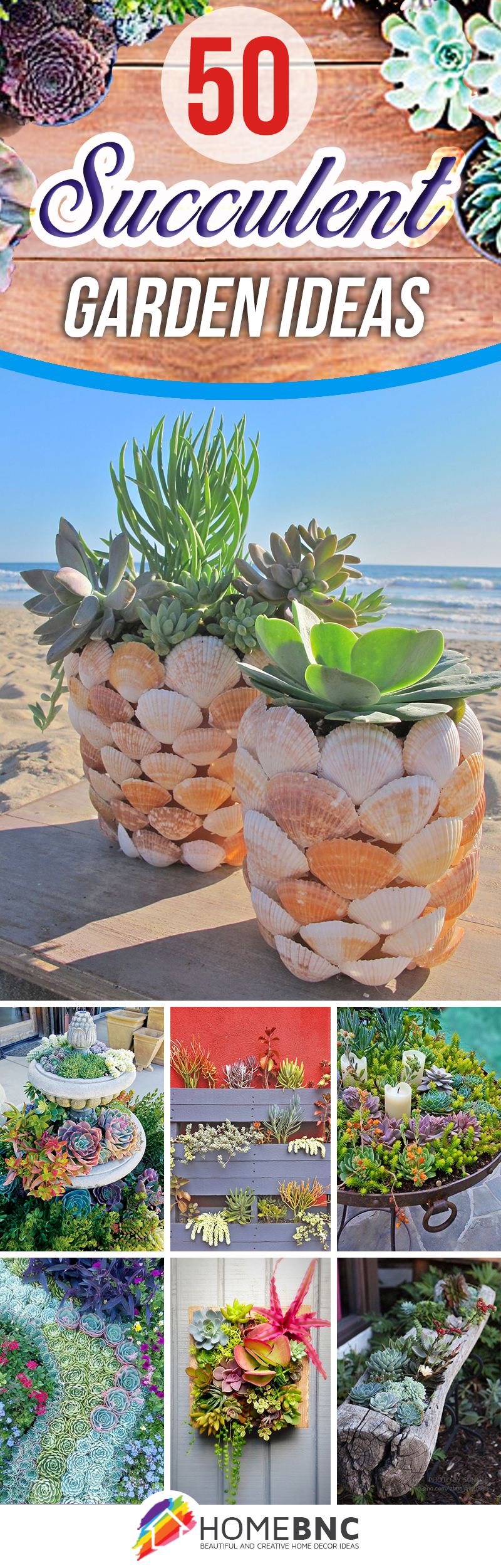 Best designs for succulent gardening