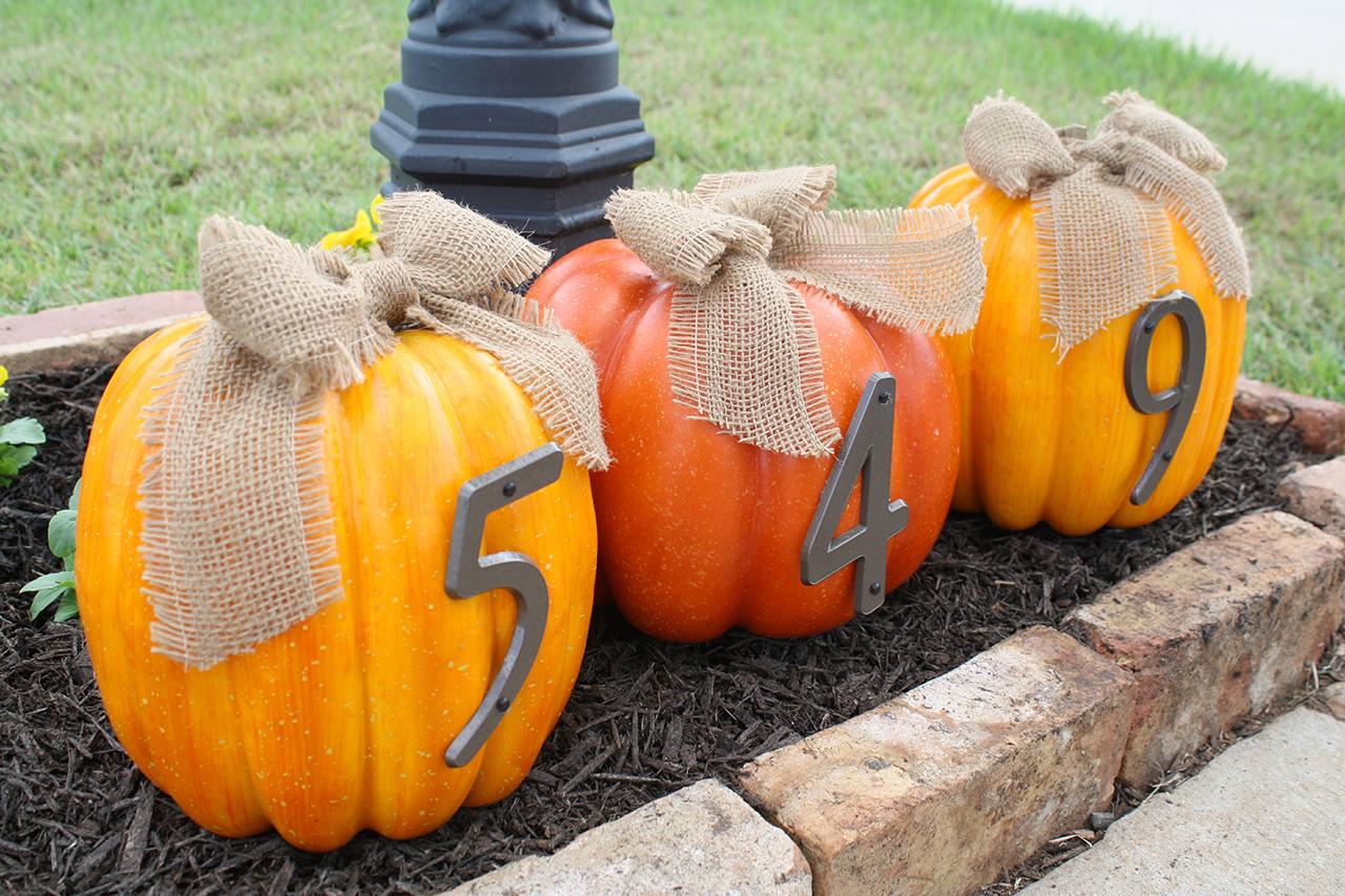 address my pumpkin