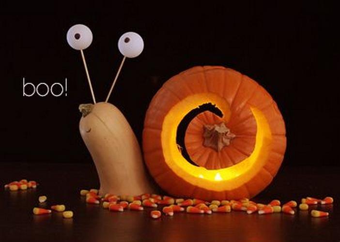 snail in pumpkin