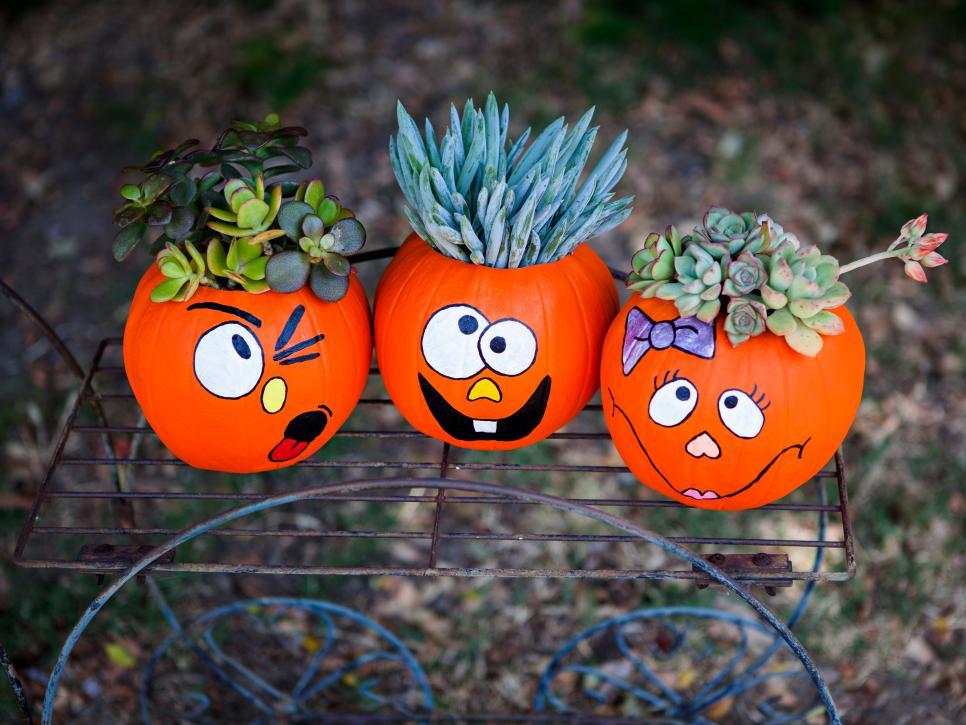 crazy pumpkin plant trio - Pumpkin Decoration