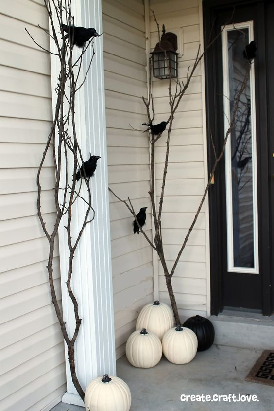 Black Ravens and White Pumpkins