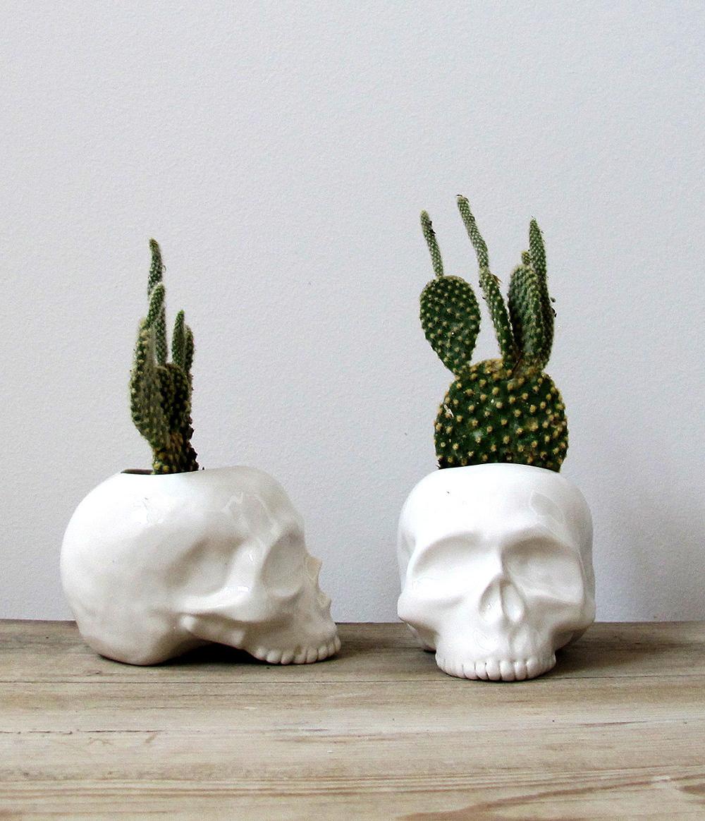 Skull Plant Holders