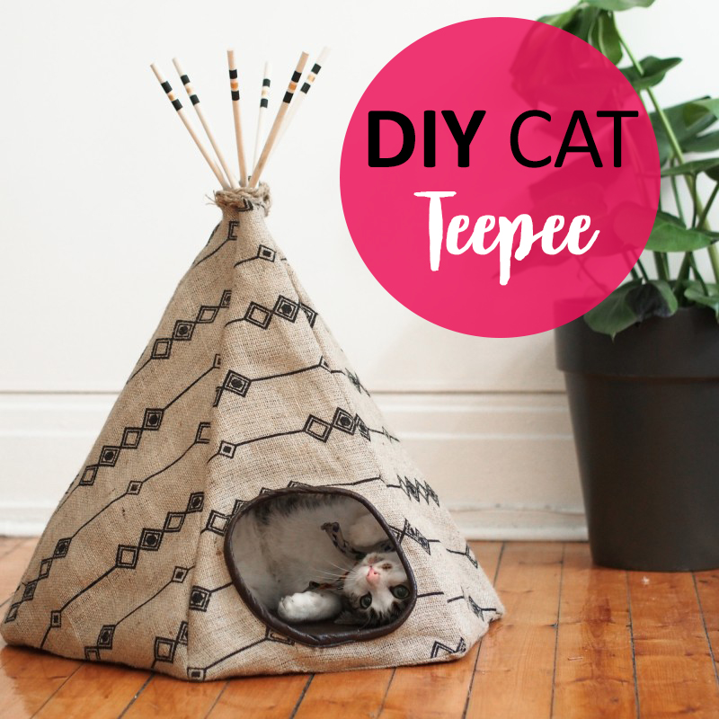 26 Best Diy Pet Bed Ideas And Designs For 2017