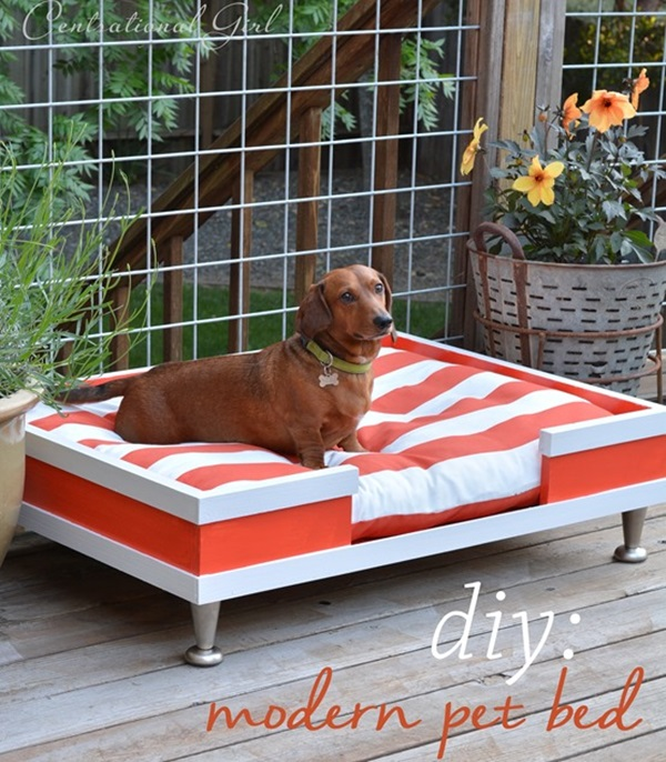 Footed Pet Bed with Matching Mattress