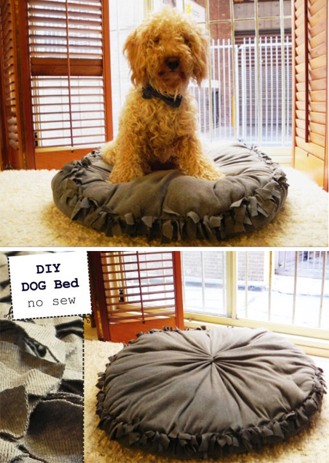 No-sew Fleece DIY Pet Bed Design