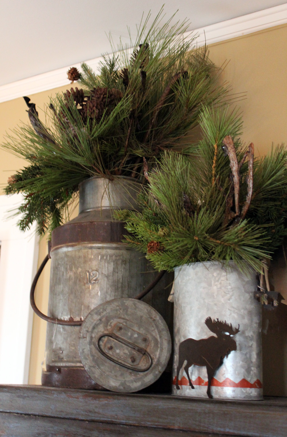 Pine Arrangement in a Milk Jug