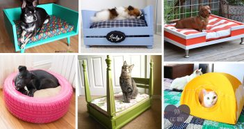 DIY Pet Bed Ideas