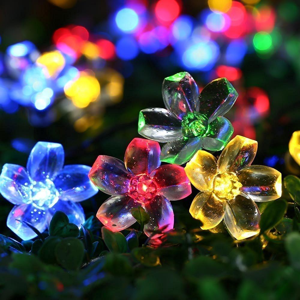 Cherry Blossom Lights