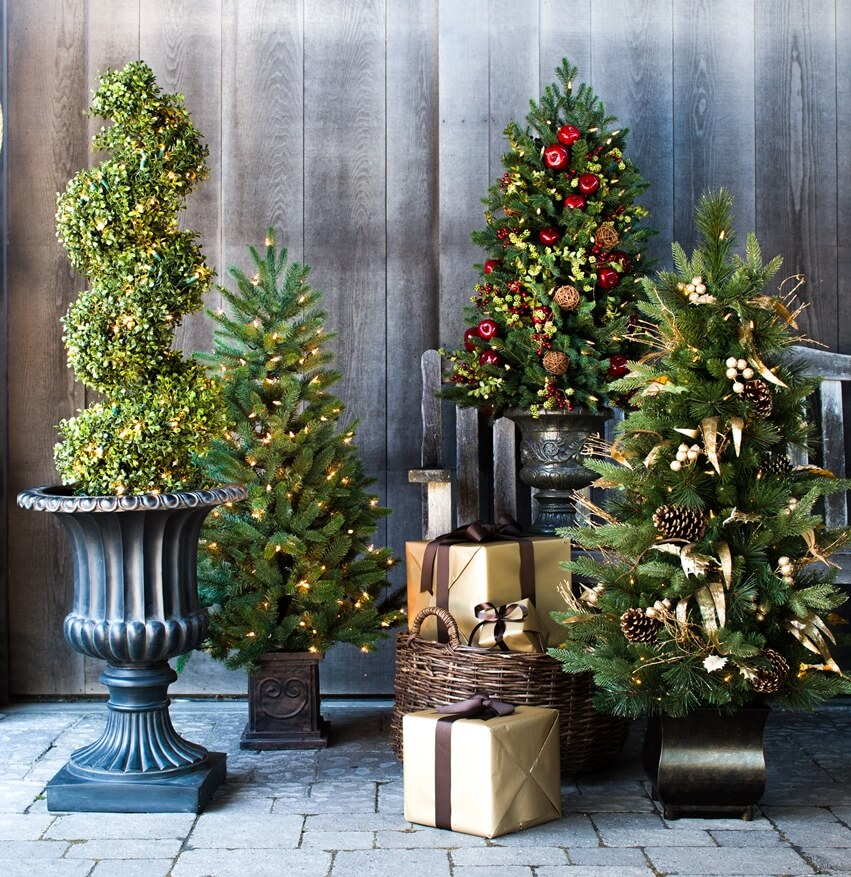 Christmas Trees in Decorative Planters