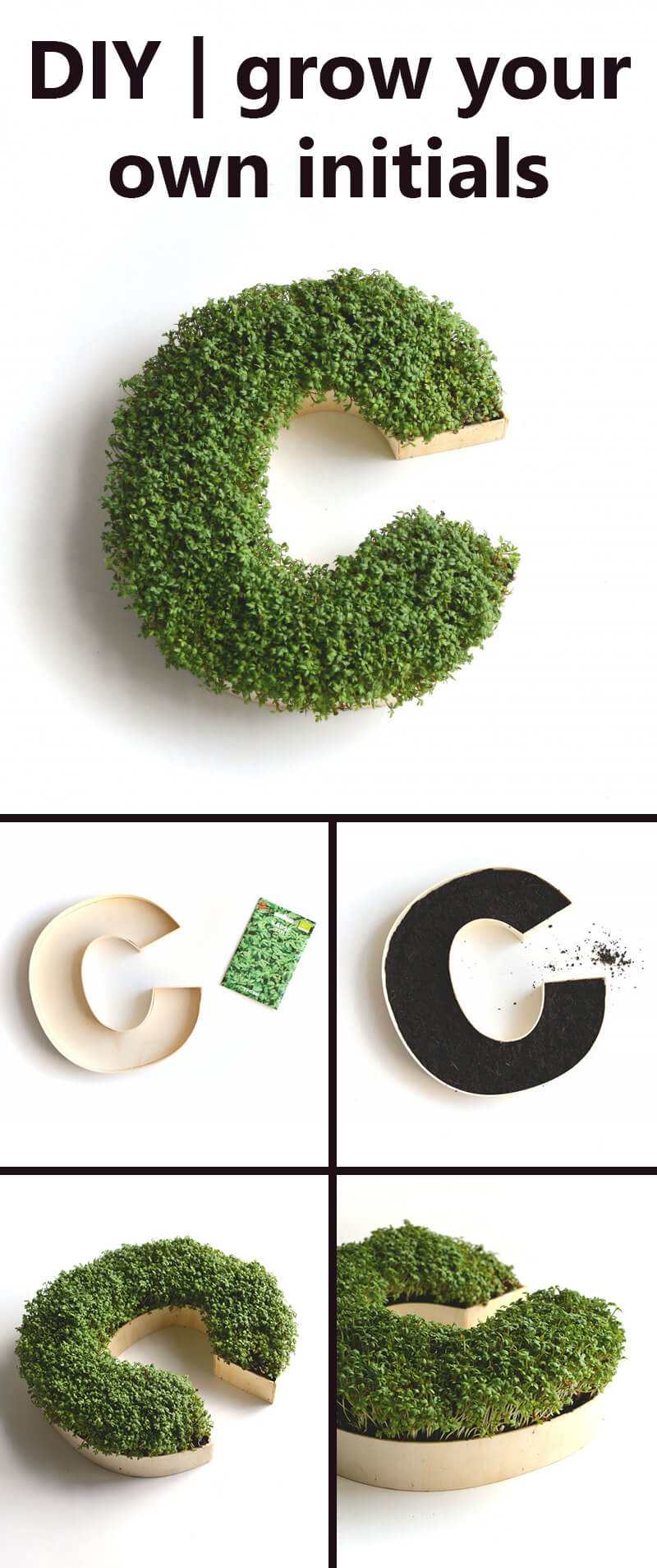 Go Green With a Living Monogram