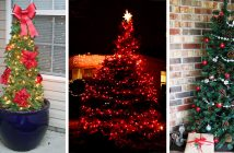 Outdoor Christmas Tree Decorations
