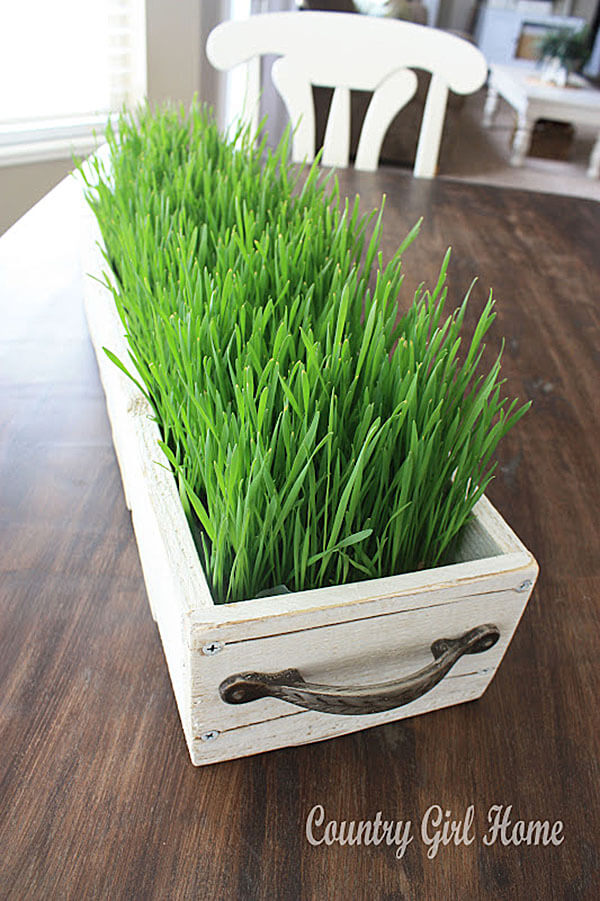 Add Some Color with a Grassy Centerpiece
