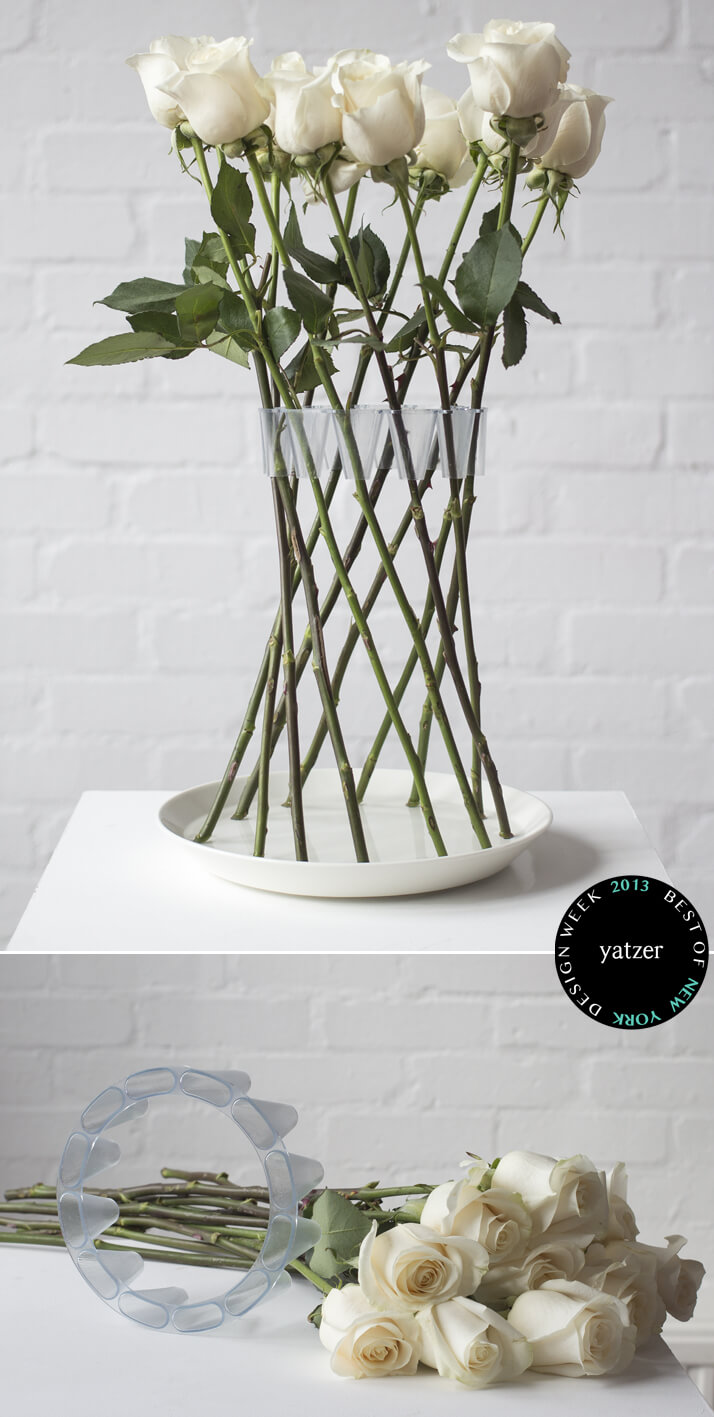 Long Stem Roses Woven into Invisible Vase