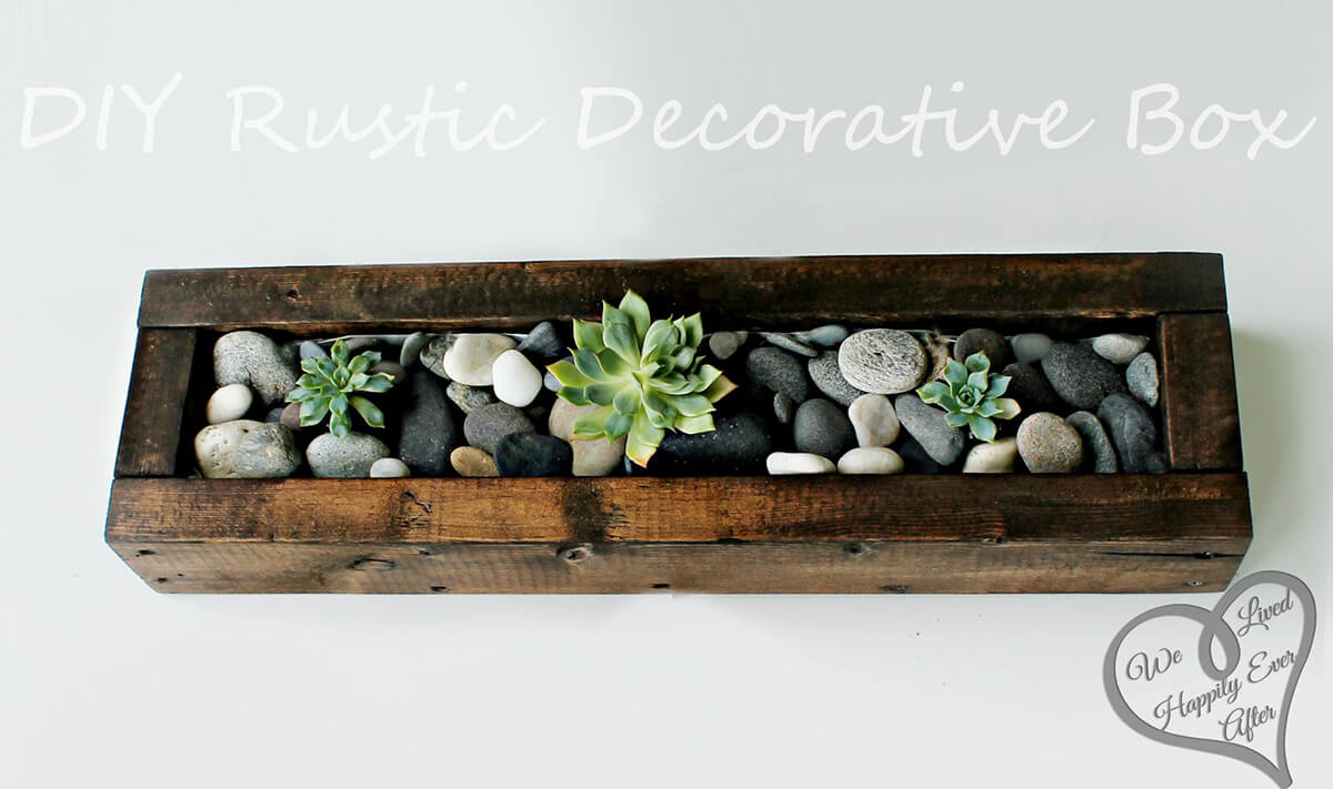 An Earthy Box with Real Stones and Cacti
