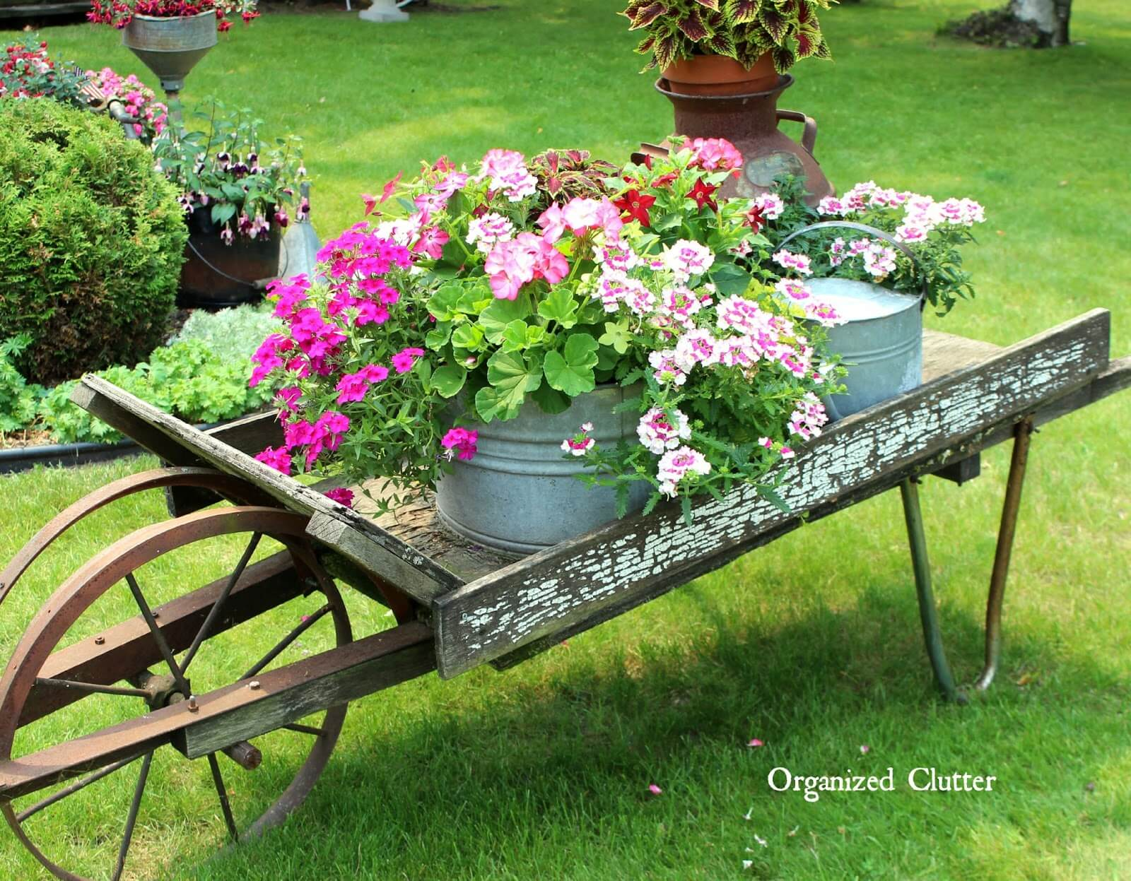 Wheelbarrow Vintage Garden Flower Display