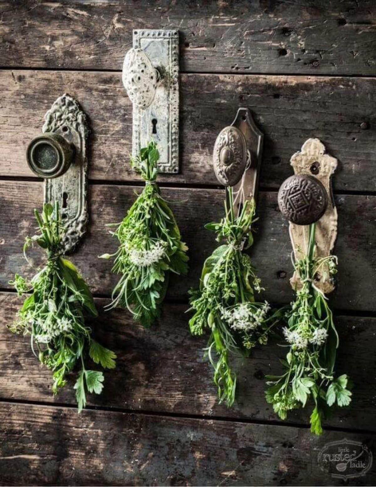 antique doorknob flower and herb drying display - Garden Ideas Vintage