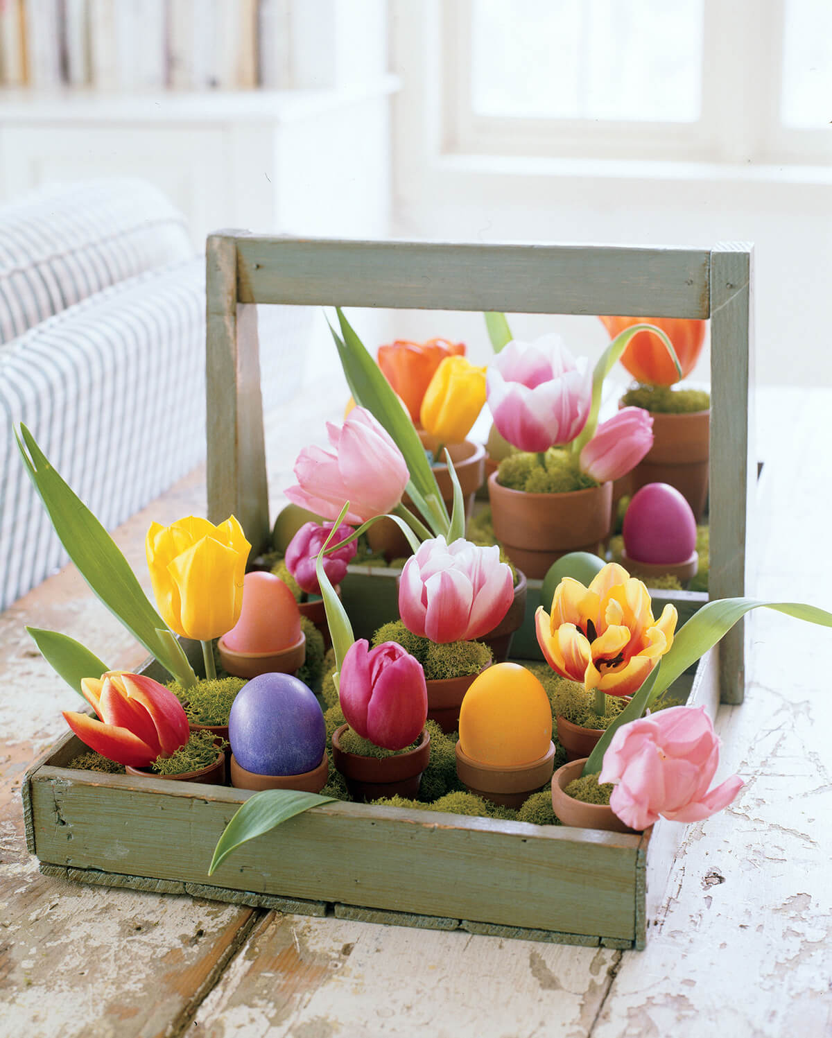 28 Easter Tray Of Potted Eggs And Spring Bulbs