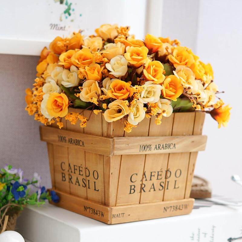 Dreamy Orange and Cream Blossoms in Tidy Planter