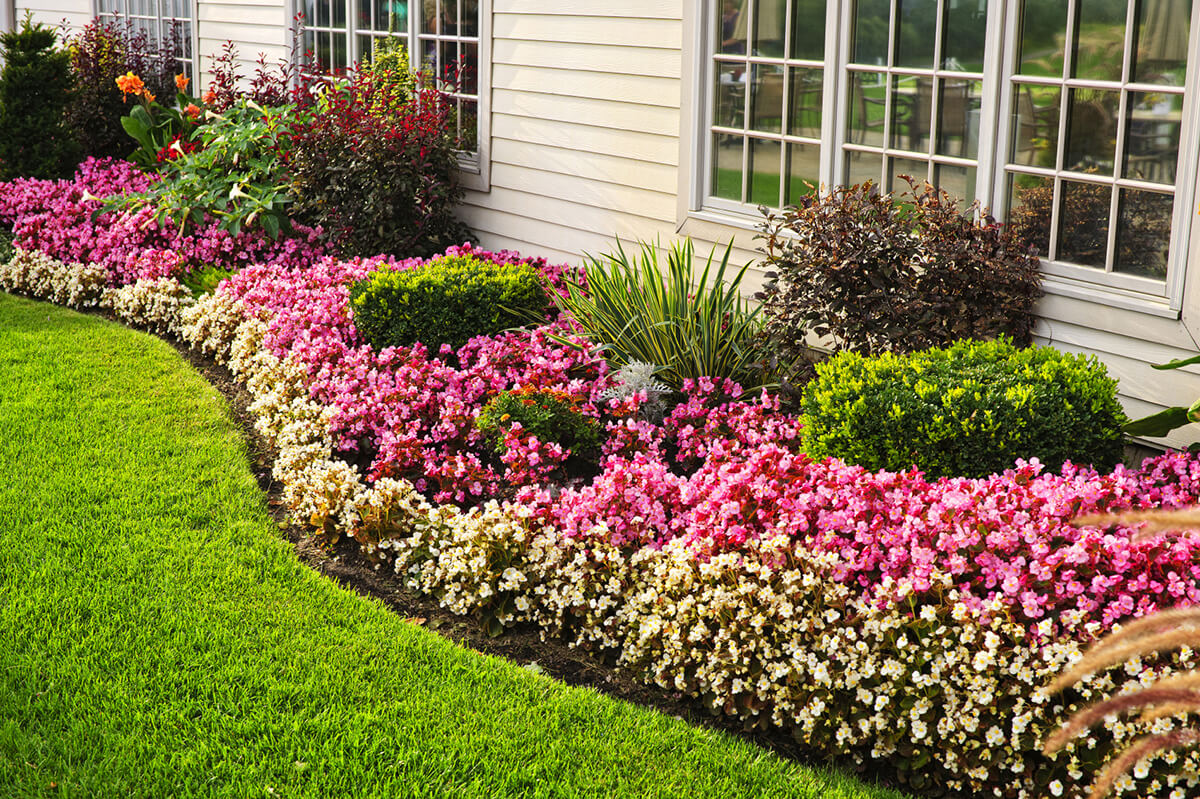 perennial flower bed for summer long blooms - Pictures Of Flower Bed Ideas