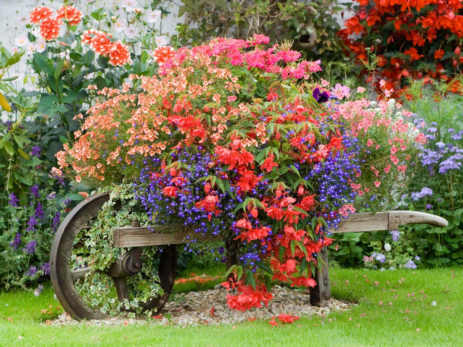 cottage style planted wheelbarrow - Front Yard Cottage Garden Ideas