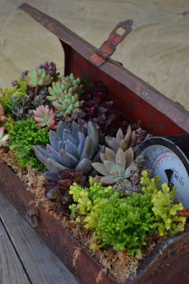 39 best creative garden container ideas and designs for 2017 - Unique container gardening ideas ...