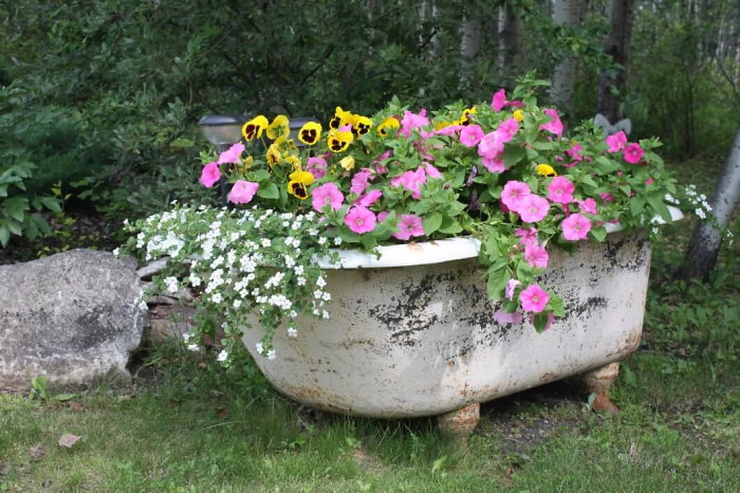 Antique Bathtub as Garden Décor