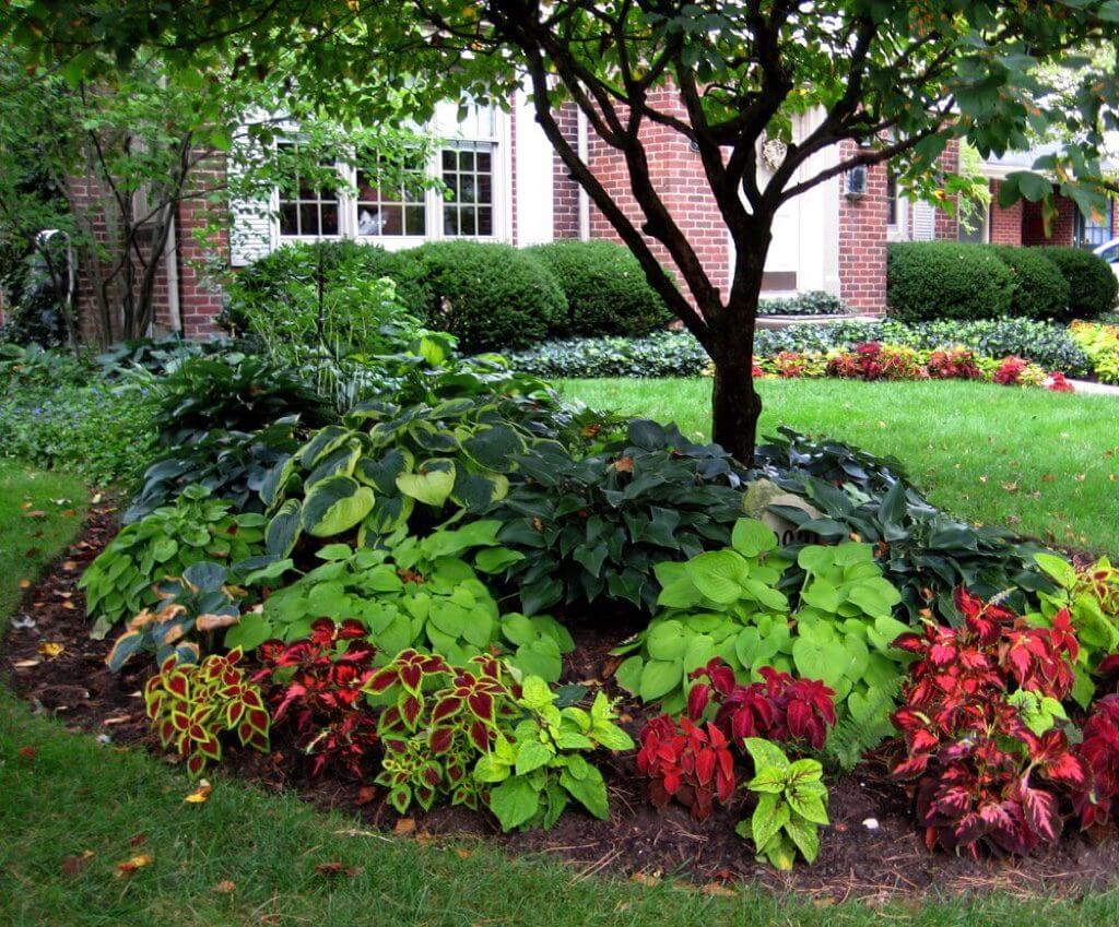 5-easy-landscaping-ideas-get-your-house-ready-for-sale-add-value-to-your-home