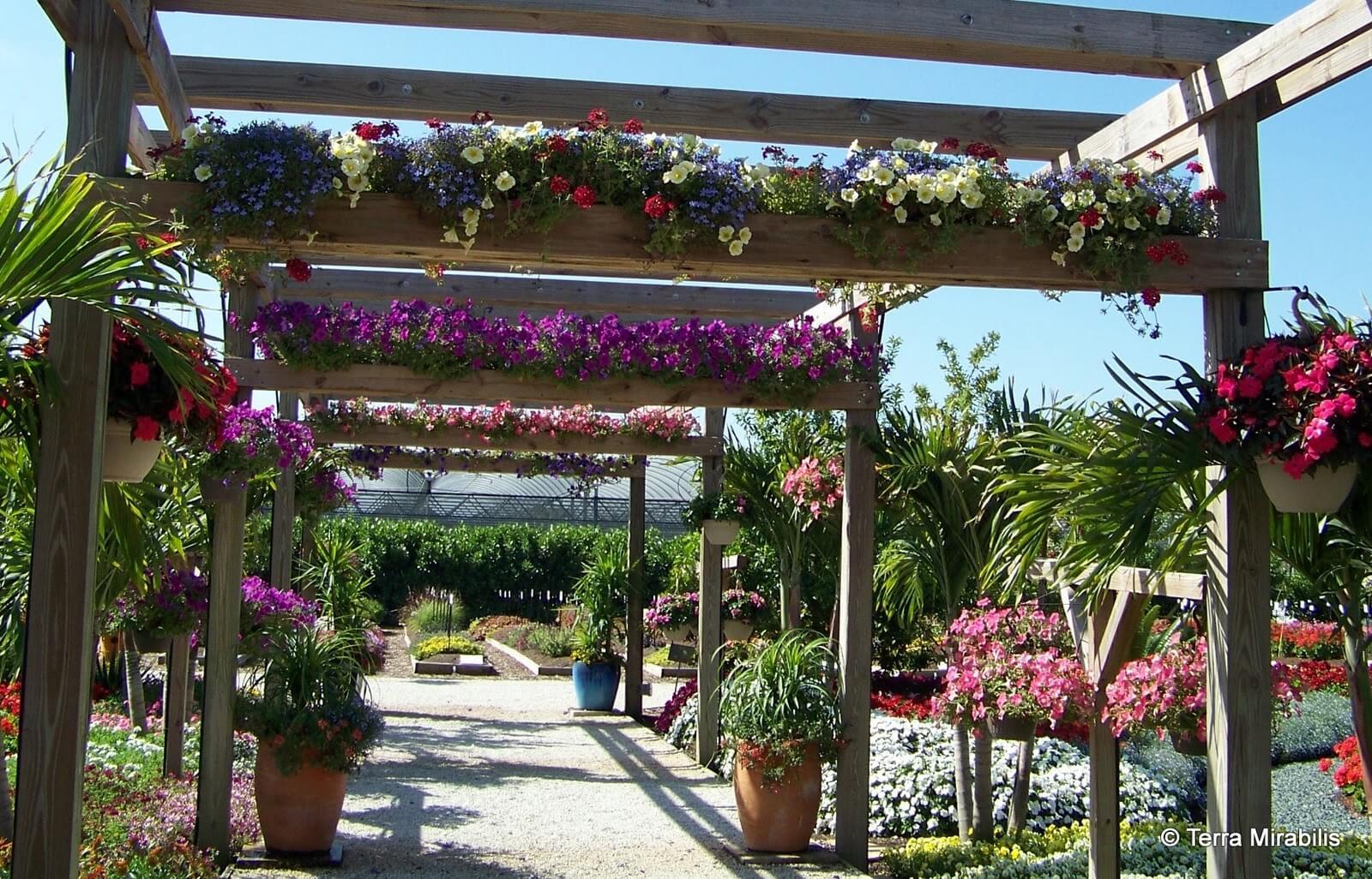 Botanical Promenade Pergola With Planter Implements