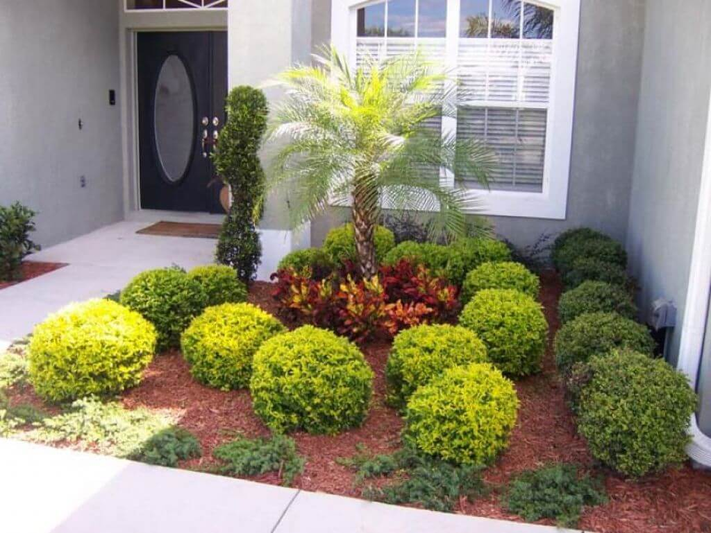 50 best front yard landscaping ideas and garden designs for Front yard plants