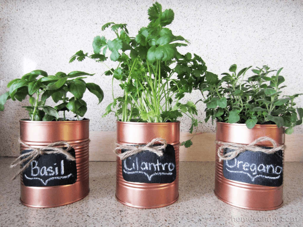 A Rustic Look for Your Herb Garden